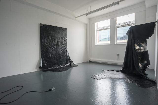 Erin Hagan. MFA Show. Installation image. 2014