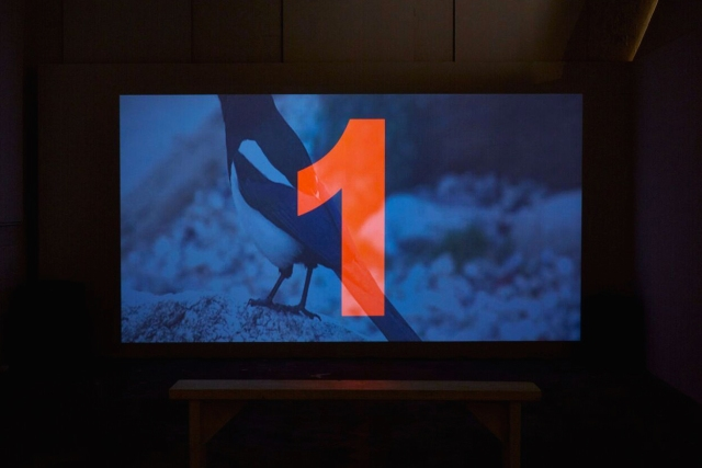 Helouise O'Reilly. Installation View. Transmit. MFA Interim show. Platform Arts. 2017
